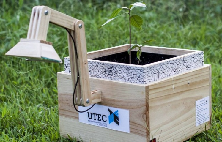 Plantalámpara-–-Generating-Electrical-Power-From-The-Soil