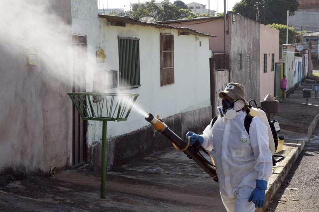 1219694-virus-zika-sevit-bresil-touche
